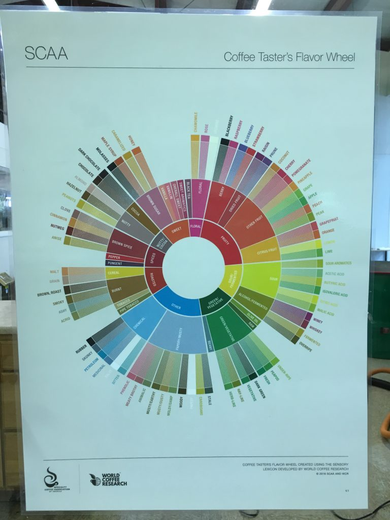 coffee_tasters_flavor_wheel